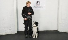 Dog Training – Grabbing Collar