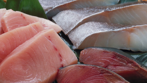 Omega 3 - Fish or Supplement
